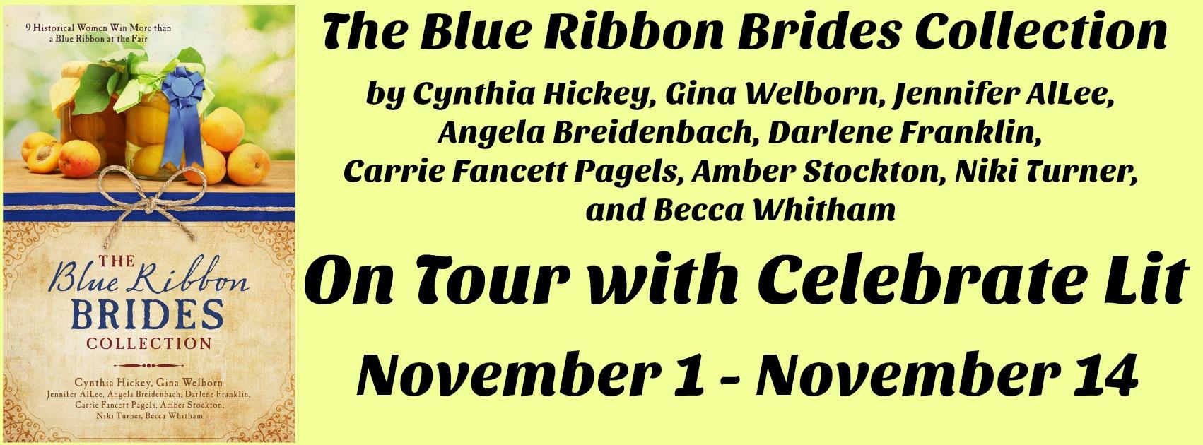 Blue Ribbon Brides Banner