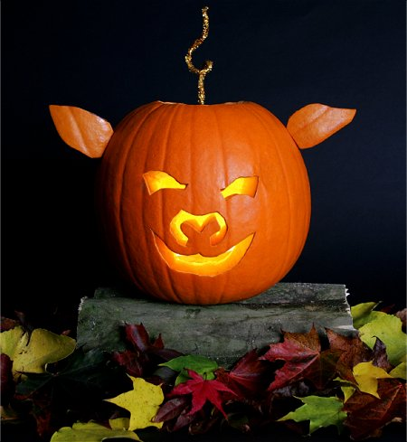 pig pumpkin carving idea