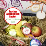 Teacher Appreciation Day Fruit Basket + Free Printable Tags