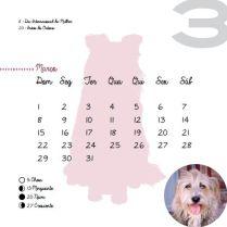 Calendario_2015-8