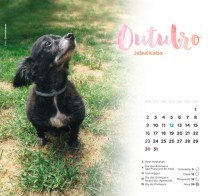 Outubro_Jabuticaba2