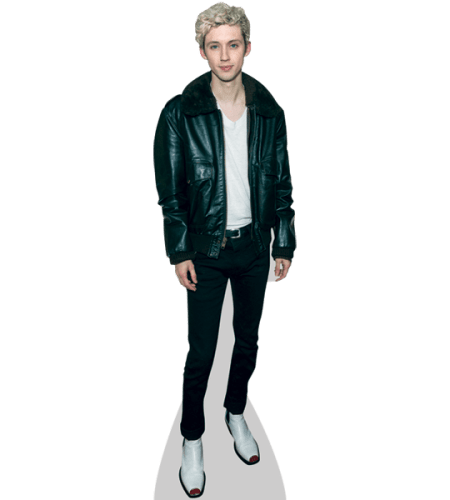 Troye Sivan (Leather Jacket)