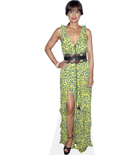 Carla Gugino (Green Dress)