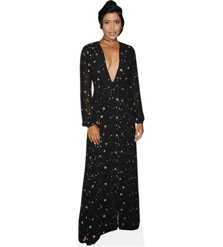 Tiya Sircar (Star Dress)