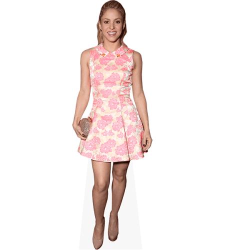 Shakira (Pink Dress)