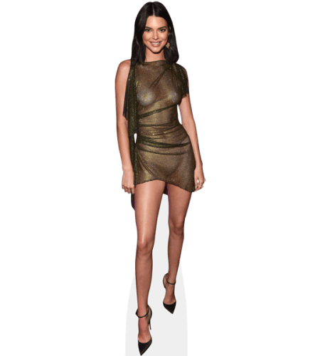 Kendall Jenner (Sheer Dress)