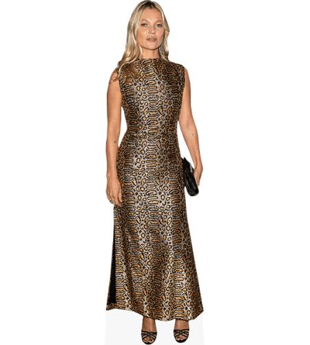 Kate Moss (Gold Dress)