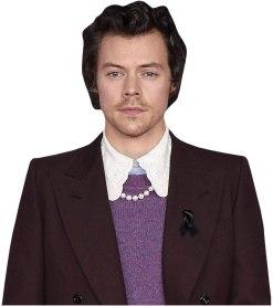 Harry Styles (Burgundy Suit) Cardboard Buddy Cutout