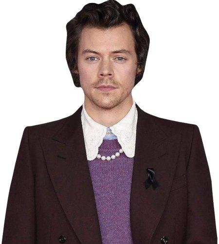 Harry Styles (Burgundy Suit) Cardboard Buddy Cutout