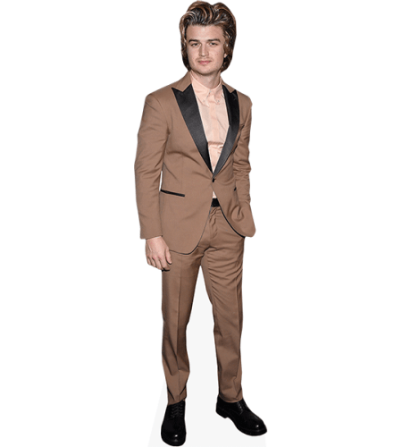 Joe Keery (Brown Suit)