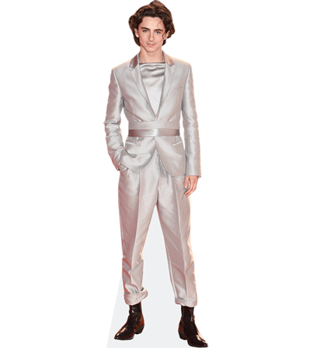 Timothee Chalamet (Silver Suit)