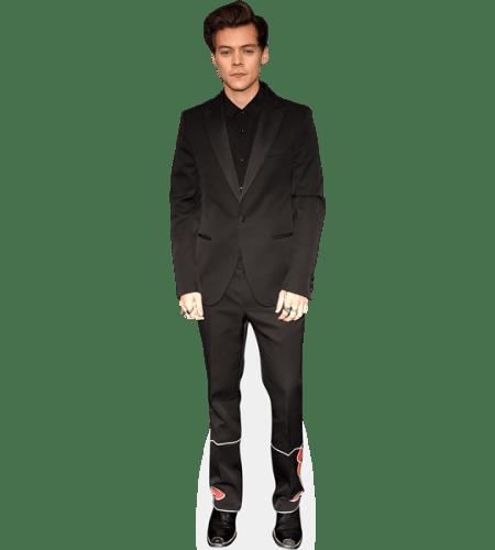 Harry Styles (Suit)