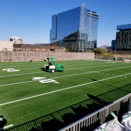 sports field artificial turf