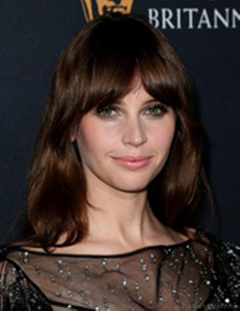 52 Attractive Hairstyles Of Felicity Jones