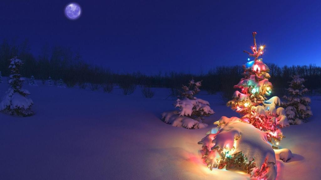 Christmas Wallpapers Colorful Snow Winter Tree Backgrounds