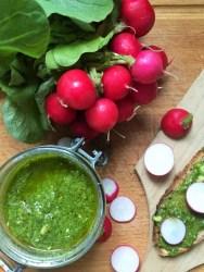 Testez ma recette de pesto de fanes de radis, facile, rapide et zéro déchet