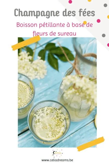 Pétillant de fleurs de sureau: boisson fermentée naturelle