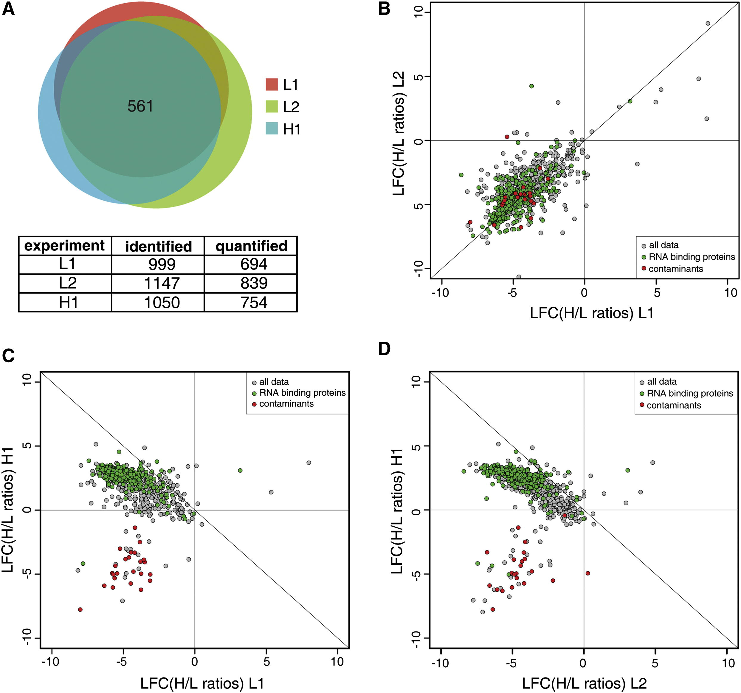 The Mrna Bound Proteome And Its Global Occupancy Profile On Protein Coding Transcripts