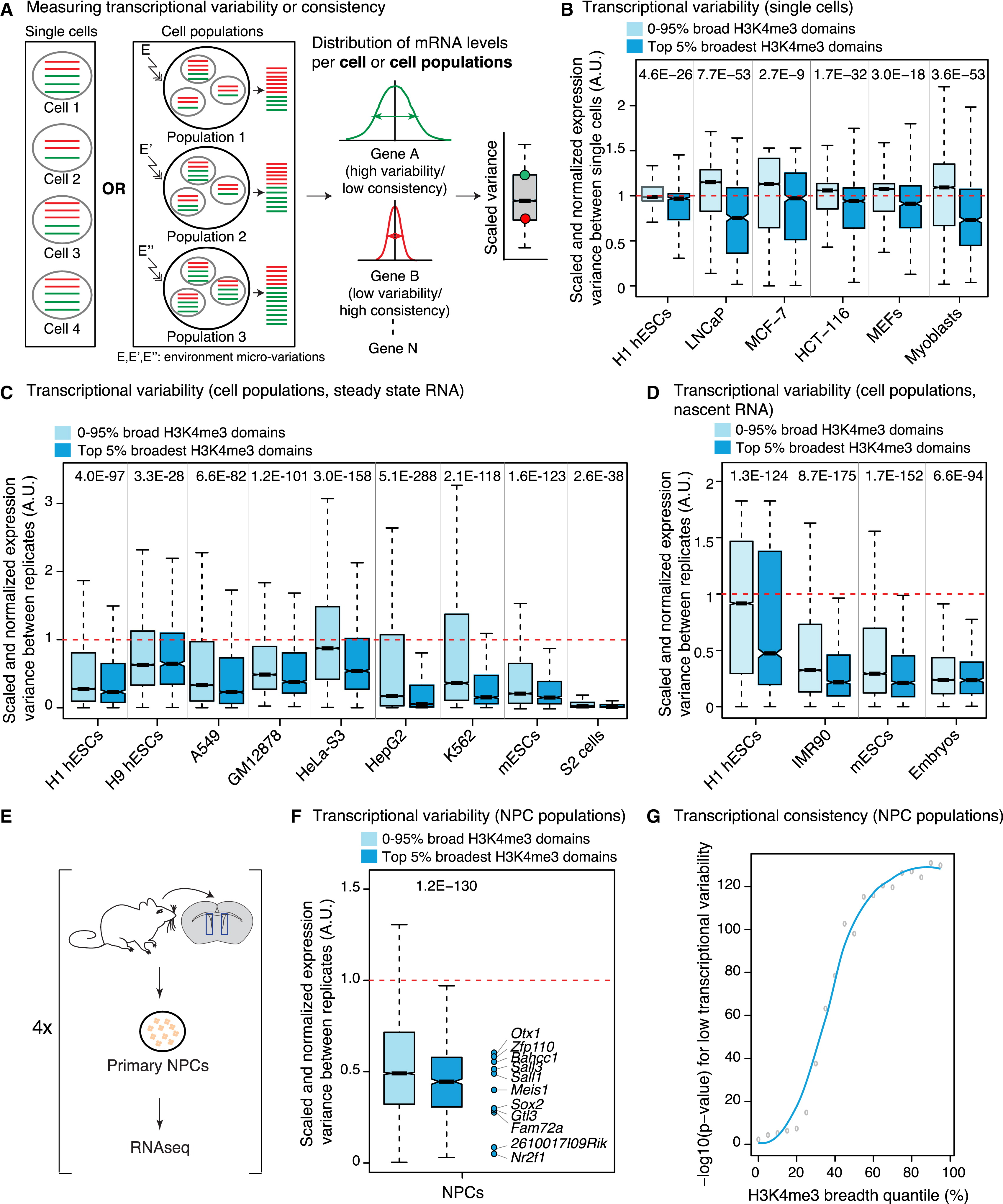 H3k4me3 Breadth Is Linked To Cell Identity And Transcriptional Consistency Cell