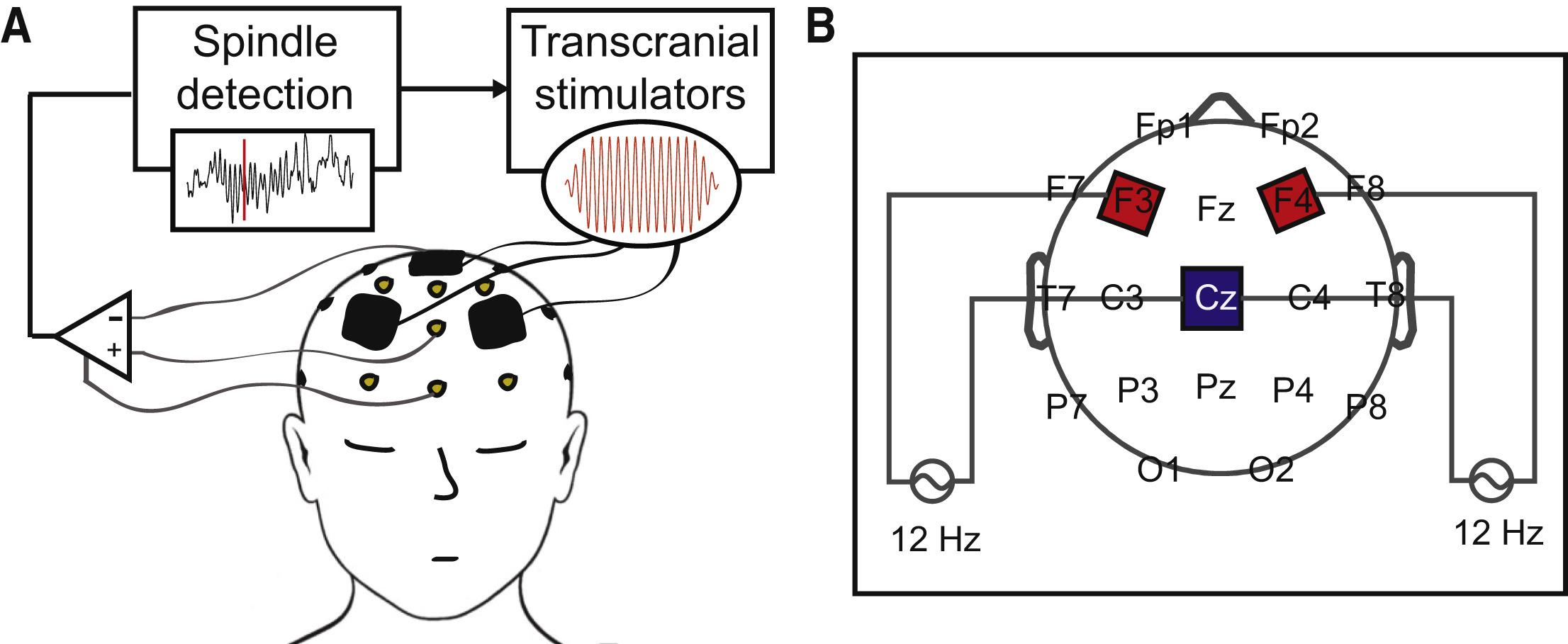 Feedback Controlled Transcranial Alternating Current