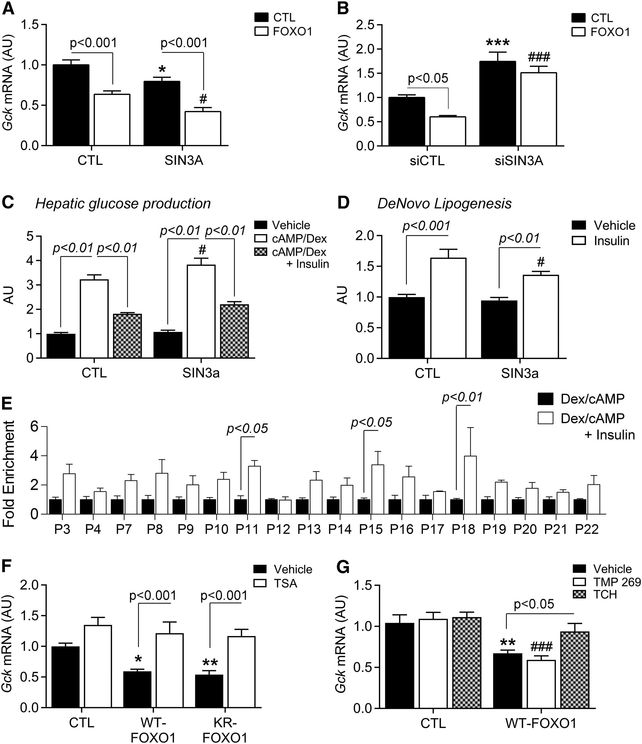 Selective Inhibition Of Foxo1 Activator Repressor Balance