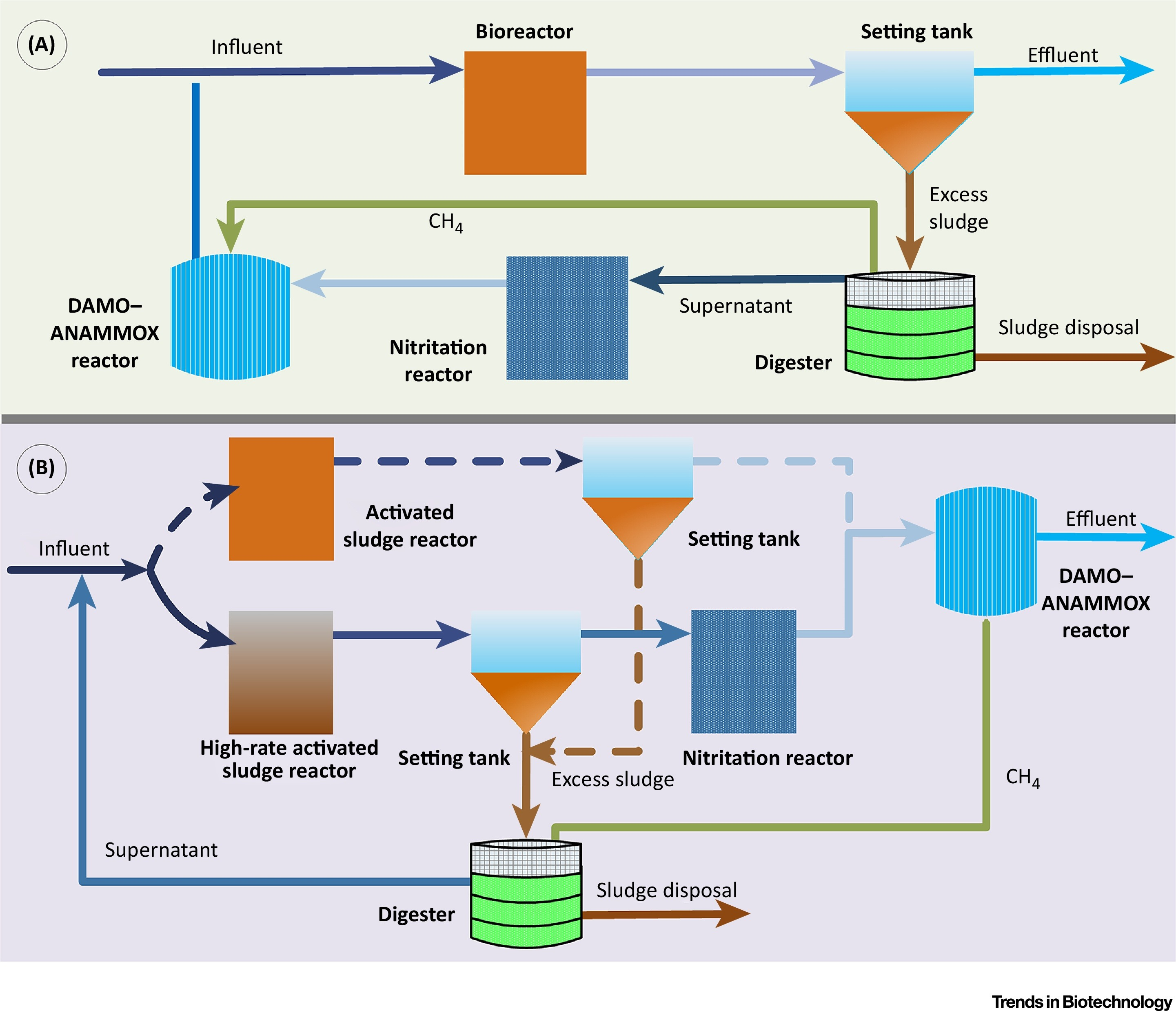 Wastewater Opportunities For Denitrifying Anaerobic