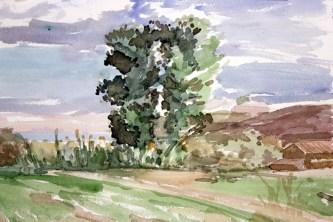 En el camino de Altorricón (acuarela de Fernando Alvira)