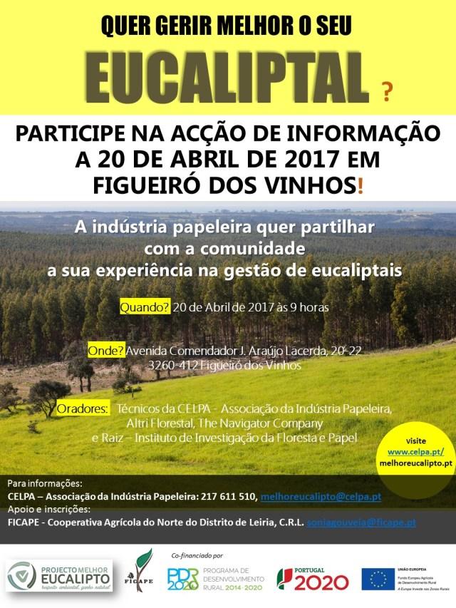 Cartaz A3_FigueiróVinhos (2)