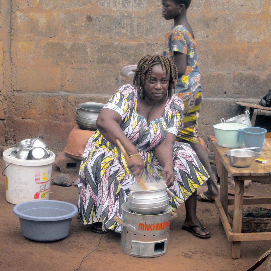 Sustainable business design: entrepreneurs du monde case study