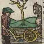 juni brachmonet (1512)