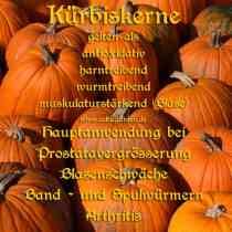 heilgemüse_kürbiskl
