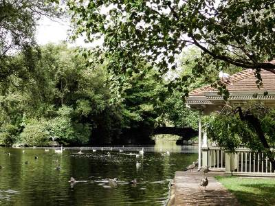 Pond in St Stephen's Green, Dublin