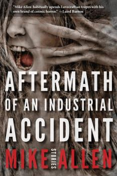 cover of Aftermath of an Industrial Accident by Mike Allen