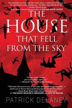 cover of The House that Fell from the Sky by Patrick Delaney