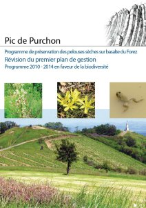 PDGs-Purchon-web