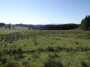 Le bassin versant de l'Eyrieux, un territoire riche en zones humides