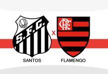 futebol ao vivo, jogo do flamengo ao vivo hoje, flamengo x santos ao vivo