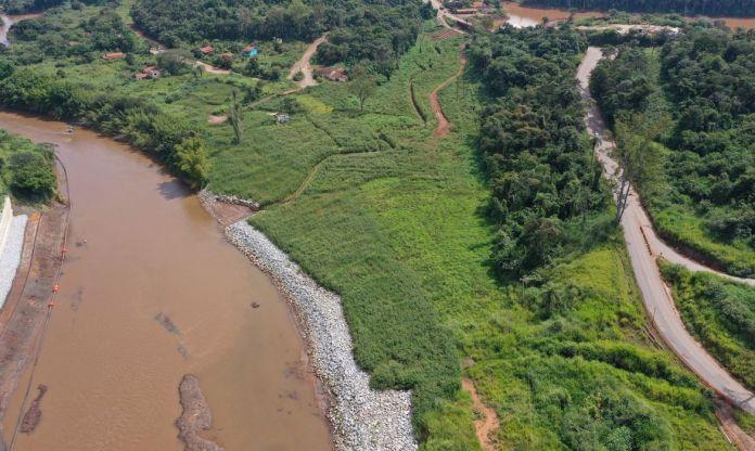 Reflorestamento em Brumadinho