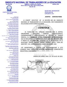 Convocatoria para la Asamblea Estatal Extraordinaria el 22 de julio de 2015
