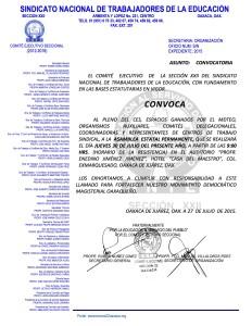 Convocatoria para la Asamblea Estatal Permanente el 30 de julio de 2015