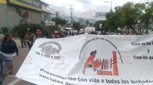 Marcha Oaxaca 10 julio 2015(11)