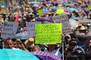 Megamarcha Nacional y mitin 27 julio 2015(14)