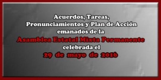 ACUERDOS Asamblea Mixta 29 mayo 2016