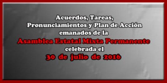 ACUERDOS Asamblea Mixta 30 julio