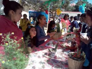 Tequio Pedagógico San Juan Teitipac 24 marzo 2017_33