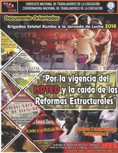 Documento Orientador Brigadeo Estatal 2018
