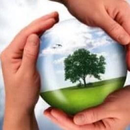 Curso Responsabilidade Social e Sustentabilidade