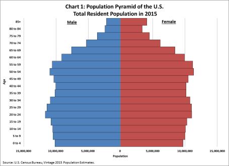 US Demograpic Structure