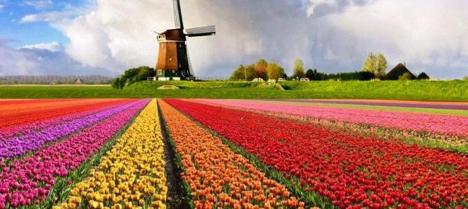 Explore Belgium and the Netherlands