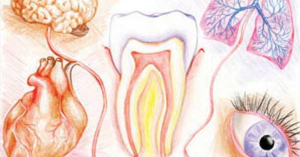¡Conoce mejor la conexión entre tu boca y el resto del cuerpo!